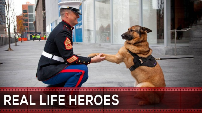 REAL LIFE HEROES | 2015 | Faith In Humanity Restored | (Video)